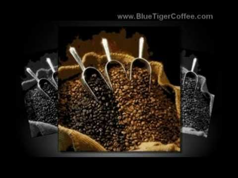 Seattle Coffee Service | (206) 388-2202 | Blue Tiger Coffee
