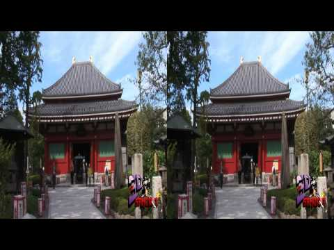 The 3D Samurai's Demo Reel - Side by Side