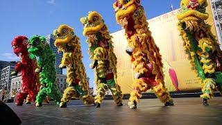 柔功門區德基國術會 Yau Kung Moon Richard Ow - Drum Routine & Lion Dance San Francisco City Hall