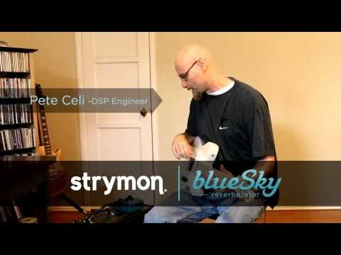 Strymon Blue Sky Reverberator Reverb