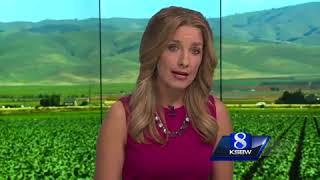 Bear Fire destroys Boulder Creek homes