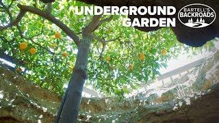 Fresno's Underground Garden was created by one man's American dream   Bartell's Backroads