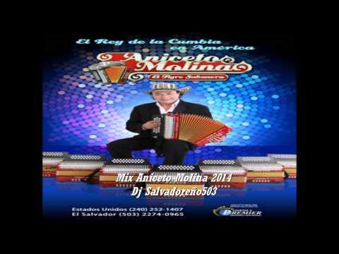 Mix Aniceto Molina 2014 - Dj Salvadoreño503