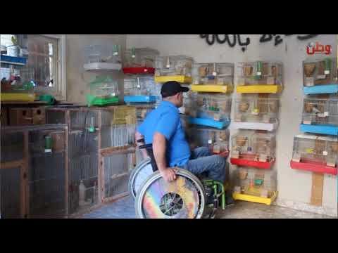 من كرسيه المتحرك .. يؤهل دراجات الاطفال ويطلق العصافير