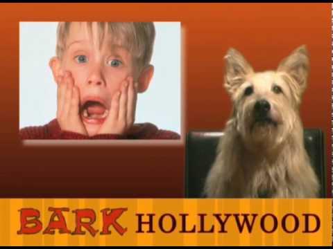 Bark Hollywood - Episode 11