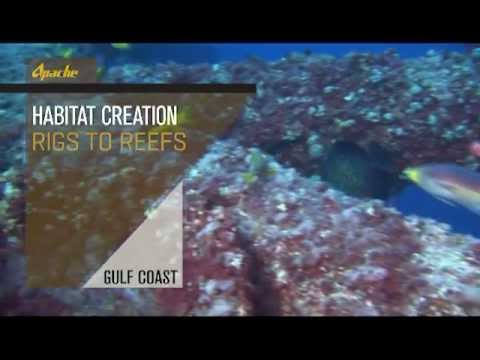 Habitat Creation - Rigs to Reefs