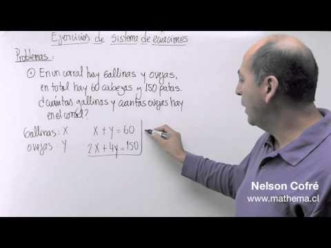 Sistema de ecuaciones 7
