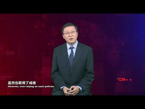 Pudong New Area: Institutional changes are the real miracle