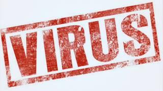 أخطر أنواع الفيروسات و مدى تأثيرها على الحاسوب المصدر -