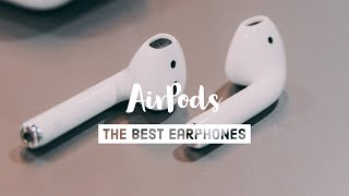 Why I LOVE my AirPods - Apple AirPods review (2019)