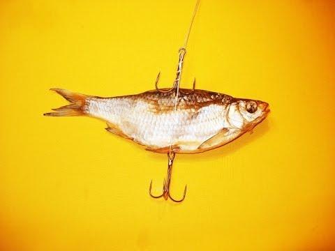 скачать рыболовные снасти
