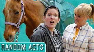 Horse Surprise - Random Acts