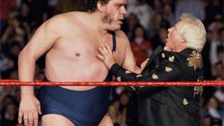 Haku On WWE Tag Title Run With Andre The Giant Lasting Longer Than Expected, His Favorite Gimmick