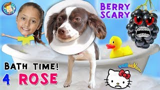 Bath Time for Rose / Berry Scare Cam / Treat Challenge & The End of Hello Kitty FUNnel Vision Vlog