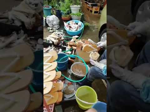 つぼや履物店 水災後 靴を洗う様子①
