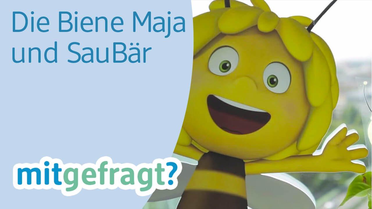 Wie Kommt Die Biene Maja Auf Die Saubär Box Zu Gast Im Studio 100 Dm Mitgefragt Folge 52