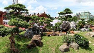Tiểu cảnh non bộ 500 triệu đẹp nhất Hà Nam