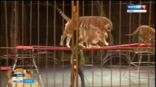 В семье цирковых животных пополнение
