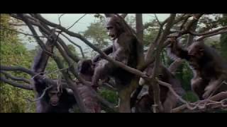 Greystoke: The Legend of Tarzan, Lord of the Apes (1984) Movie Trailer -  Christopher Lambert