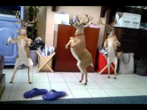 Les reine du père Noël qui danse