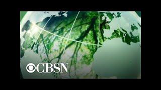 Un nuevo estudio sugiere plantar miles de millones de árboles para combatir el cambio climático