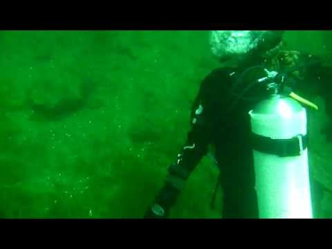 Awesome dive.  Vis 10-15+ feet Max Depth about 25 feet Temp about 79 F  Lots of other divers and fish on this wreck. Be careful for passing boats and freighters.  The wreck is located about 40 feet from shore, very easy to swim, slight current, nothing to worry about or can't work with. Can drive right up to the wreck, easy access to the shore from vehicle and walk right in.  Very nice dive, can't wait to go back.