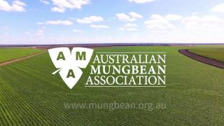 Australian Mungbean Association