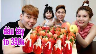 Vlog 13 ll DÂU TÂY NGHỊCH MÙA XỊT KEM TƯƠI cũng 350 Nghìn/ký giống ở Việt Nam