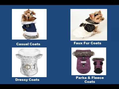 Designer Dog Apparel || DoggieCoutureShop.com