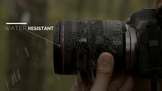 Canon EOS R: Mirrorless Water and Dust Resistant