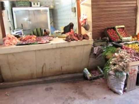 Bella Treks | Adventures in Fez, Morocco