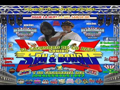 CUMBIA ALGARROBERA EL CACHORRO DE CD NEZA SONIDO SON Y BONGO JR 2014