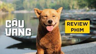 Review phim CẬU VÀNG
