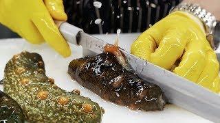 Korean Street Food - SEA CUCUMBER Seafood Korea