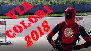 Via Colori 2018 cosplay dance video - Pharrell Williams - Happy