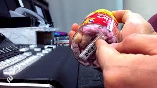 사사의 NEBOX 51. L'il Critters의 GUMMY BEARS CALCIUM +VITAMIN D - YouTube