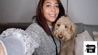 Updated Q&A | Babies?, Therapy, Watch Me Get Emotional About My Hubby | Sydel Curry-Lee