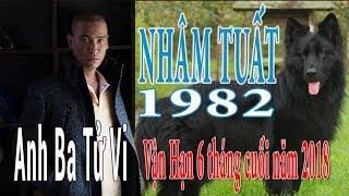 NHÂM TUẤT 1982 & Vận Hạn 6 Tháng Cuối Năm 2018
