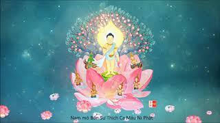 Mừng Lễ Phật Đản 2018 - Nhạc Niệm Nam Mô Bổn Sư Thích Ca Mâu Ni Phật