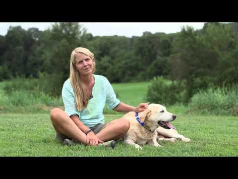 BioBagWorld- Certified compostable Dog Poop Bags
