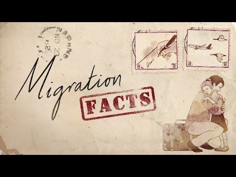 Migration Facts: Displacement by disaster