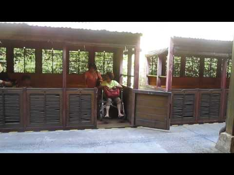 Disney World accessible ride