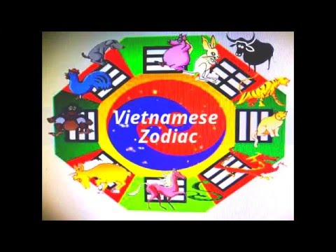 Your Animal Year In Chinese Amp Vietnamese Zodiac Youtube