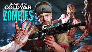 TREYARCH FOOLED US: REZNOV is ALIVE in Cold War Zombies & HERE is HOW
