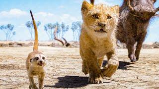 Hakuna Matata Song Scene - THE LION KING (2019) Movie Clip