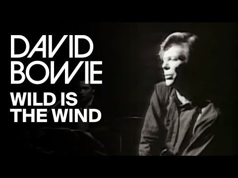 Wild Is the Wind (1991 - Remaster)