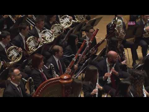 Pasodoble El Pintor SOCIEDAD PROTECTORA MUSICAL LA LIRA DE ALFARP