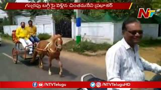 TDP Leader Chintamaneni rides Horse cart to Praja Chaitany..