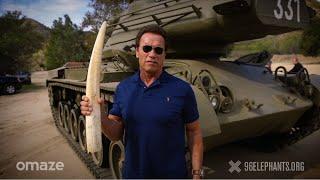 Schwarzenegger u kampanji za spas afričkih slonova