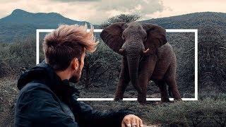 KOLD - The War against Poaching.